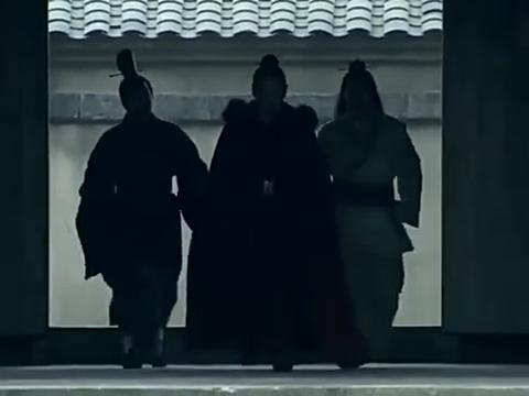 《楚汉传奇》:项羽暗杀楚怀王刘邦得知后兴兵伐楚
