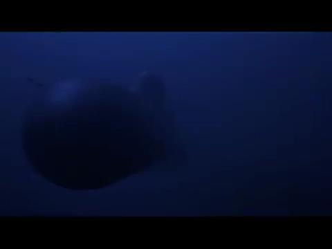美核战略潜艇遭敌攻击核潜艇鱼雷攻击,靠以假乱真的诱饵逃出生天