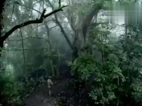 狙击手森林对决,王老赖对自己开了一枪,却让鬼子毙命了!