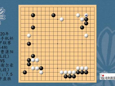 2020年华为手机杯围甲联赛第4轮,曹潇阳VS谢尔豪,黑中盘胜
