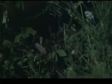 抗日剧:鬼子少佐来探路,顺溜埋伏在脚下他竟毫无察觉,机会来了