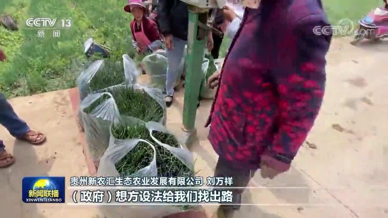 这本贵州基层干部的扶贫日记,今天上了央视《新闻联播》