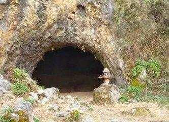男子野外探险突遇暴雨躲进山洞,洞里的场景让他忍俊不禁