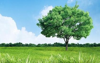 温氏食品:污染建立环保管理规范,打造安全健康绿色畜牧业
