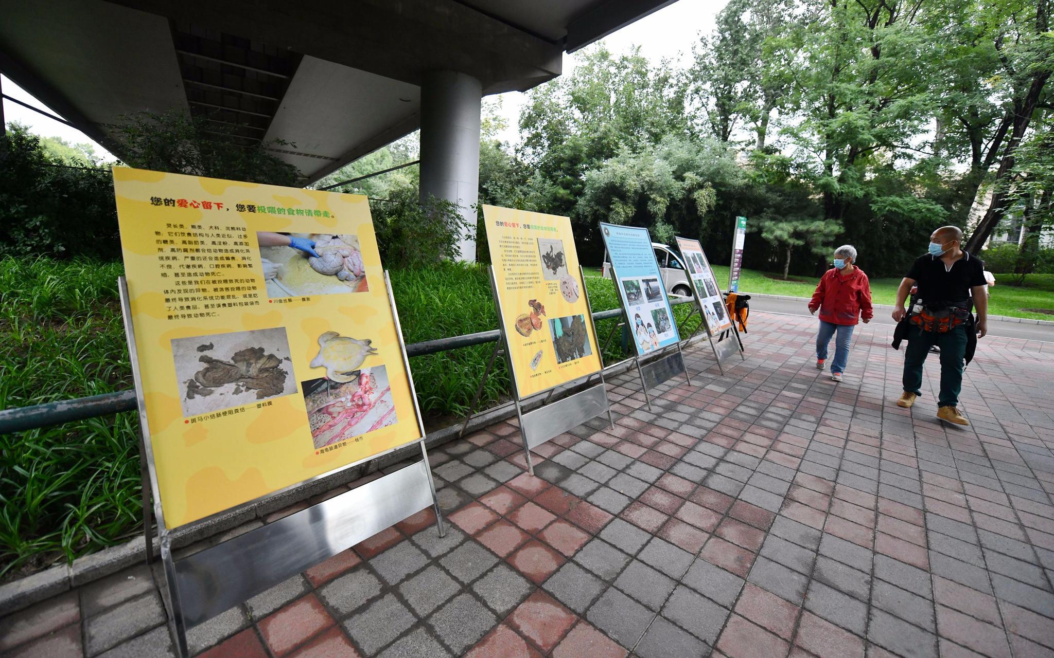 """北京动物园上""""大招"""",随意投喂动物屡劝不改将被禁止入园图片"""