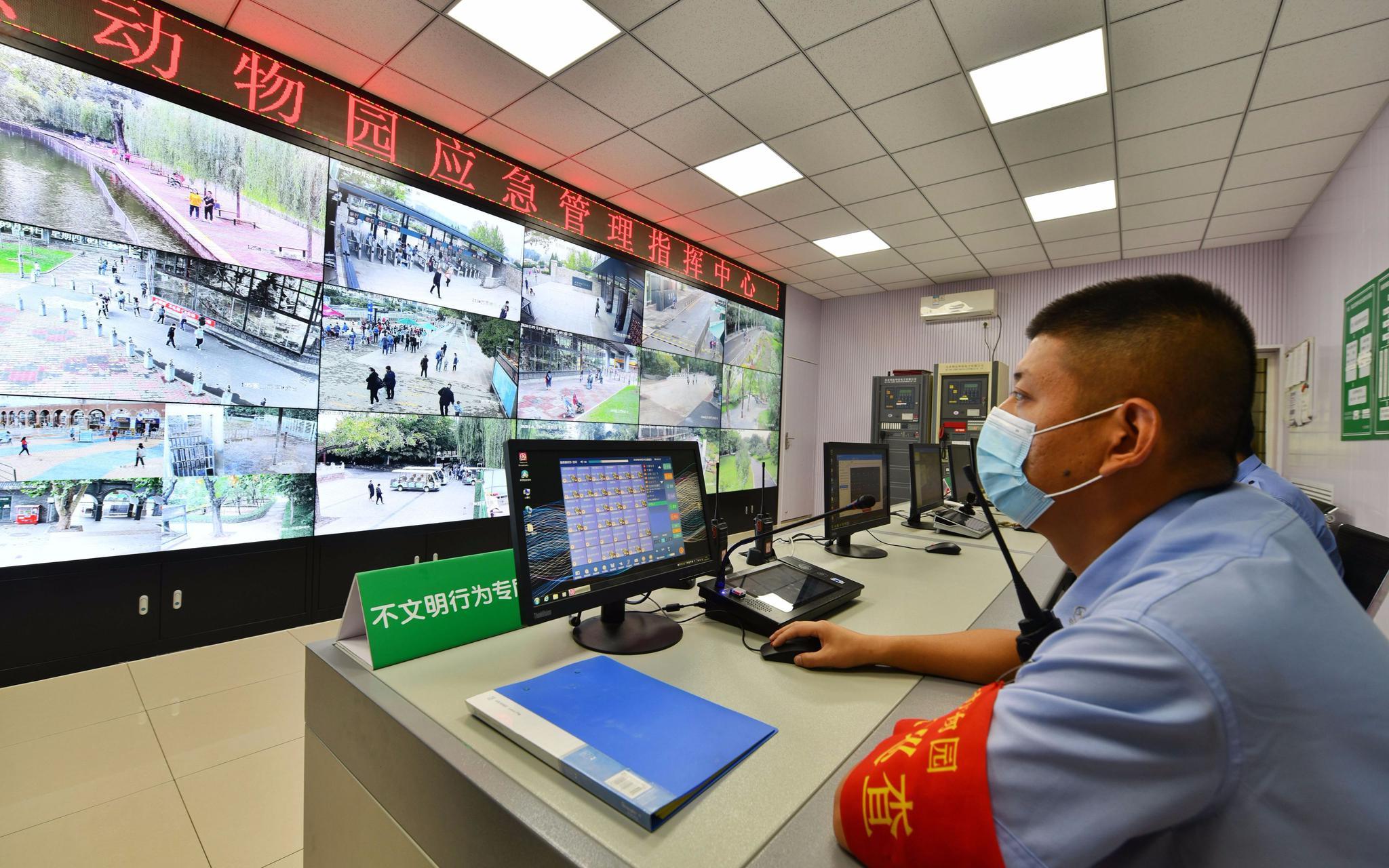 动物园应急治理批示中央内的大屏随时监控园底细况。拍照/新京报记者 侯少卿