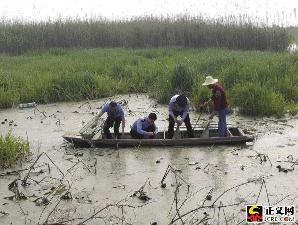 湖北省公安县审查院审查官与民警一道将充公的野生动物放生。