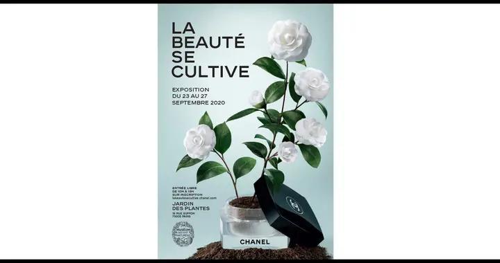 推迟半年!Chanel 的植物展终于在巴黎开幕