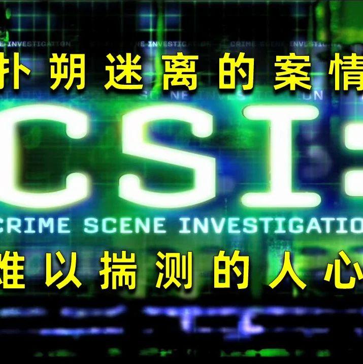 【刘哔解说】犯罪现场调查第二季07-08