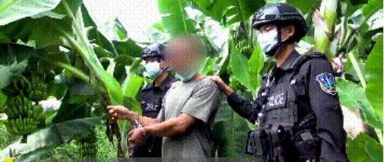 瑞丽5人运送他人偷越国境被抓!云南出动近4万警力打击这类违法犯罪