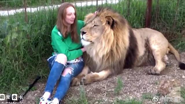 这只大猫艳福不浅呐,被俄罗斯的美女又亲又抱的