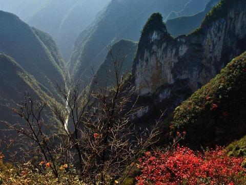 """重庆""""深山花园""""走红,风光不输九寨沟,名字来自绿林女英雄"""