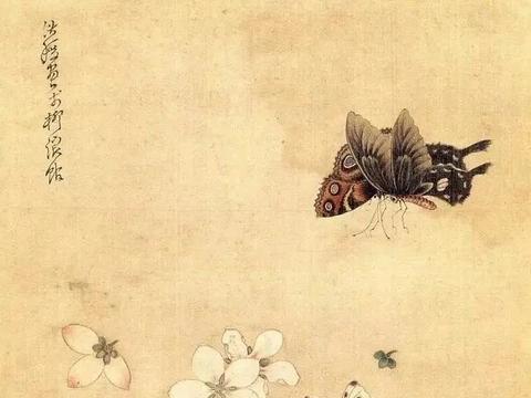 陈洪绶画草虫追求陶渊明的境界,比齐白石早了300年,让人佩服!