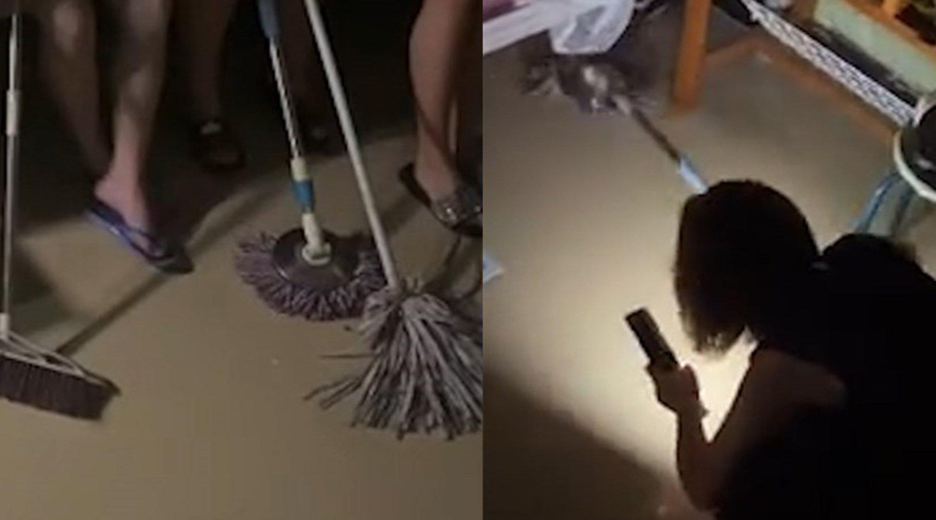 女生寝室上演人鼠大战,网友:看你们把老鼠吓的