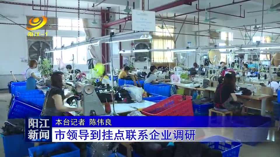 阳江市领导到挂点联系企业调研