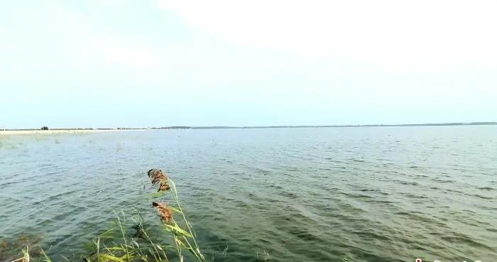 辽河流域沈阳段实现全线生态封育 生态廊道纵贯南北