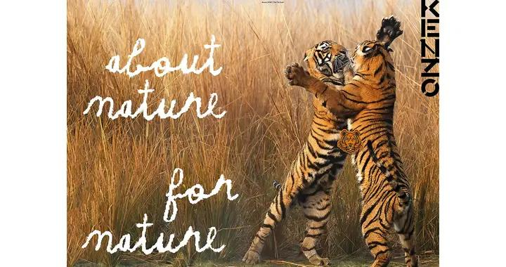 KENZO推出全新老虎胶囊系列,支持WWF 野生虎保护项目