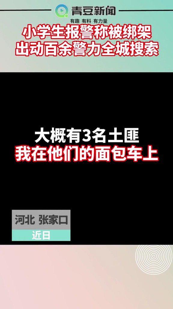 河北张家口,4名小学生报假警称被绑架……
