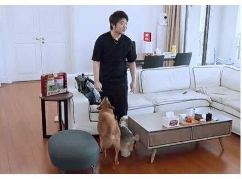 吴彤做客杨迪家里,三次从板凳上摔下来,网友:怀疑杨迪在报仇!