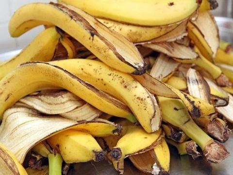 香蕉皮制作有机钾肥,无臭快速,一个月完成,备上个塑料瓶即可