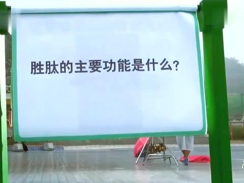 """奔跑吧:爆笑节目组:胜肽可以干什么?陈赫""""猪"""":好吃"""