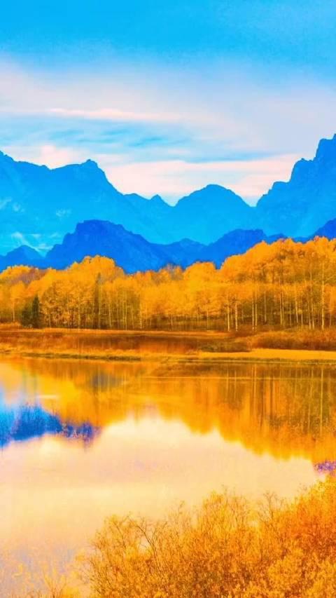 不经意间散落在一池秋水里,拨弄满地的秋韵,轻叩一帘心事!