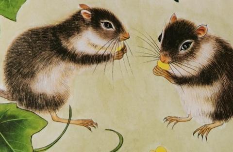 小故事:在秋天这个硕果累累的季节,收获6只老鼠,也是叫人醉了