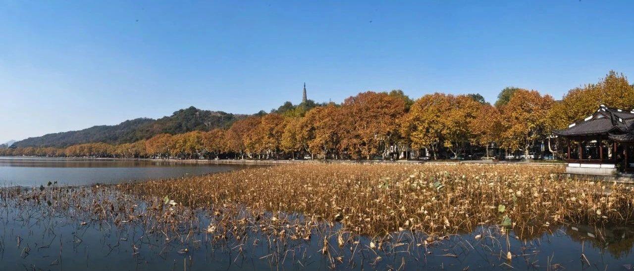 国庆中秋长假,杭州西湖、西溪景区又有新玩法!还有多重福利,攻略收好~