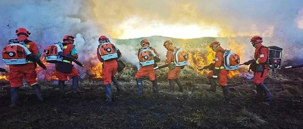 黑龙江省部署打击森林草原违法用火行为专项行动