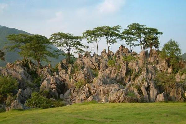 """杭州""""日式公园""""走红,景色被誉""""小镰仓"""",游客纷纷前往"""