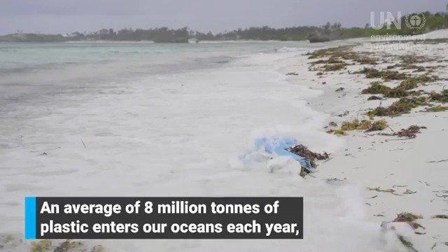 进入海洋的塑料🌊影响🌊 🔴经济 🔴生态系统