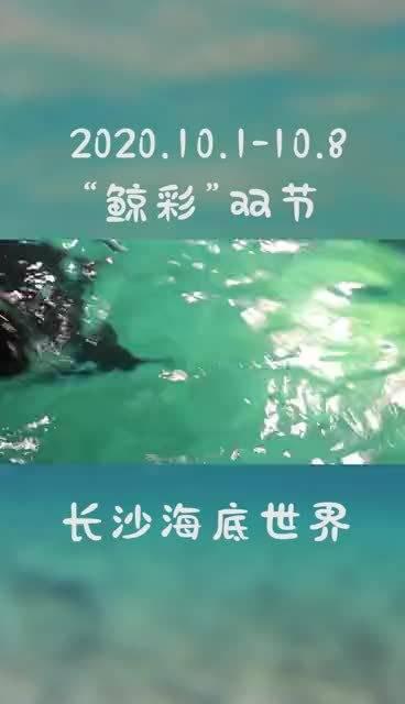 """中秋国庆去哪儿玩?长沙海底世界""""鲸彩""""双节等你到来!"""