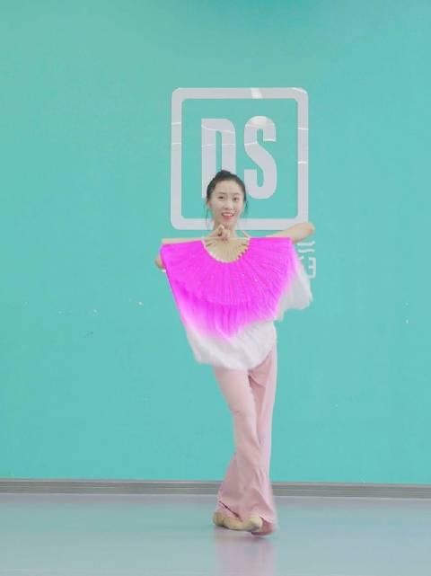中国舞《我和我的祖国》教学,我和我的祖国……