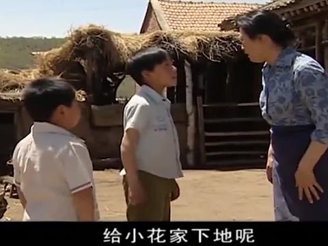 村长媳妇听儿子说丈夫拉着黄牛给小花家耕地,气得撂下围裙去察看