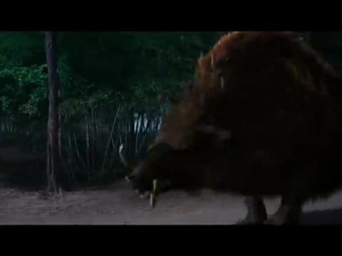 西游降魔篇猪八戒原形对抗猛虎,八戒落荒而逃