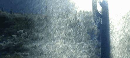 中雨+大雨+暴雨!河北大范围降雨来了,注意大风降温