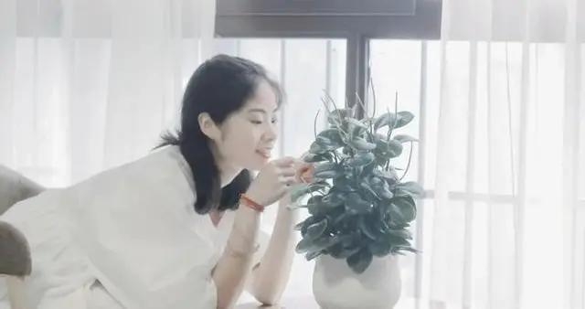 贵州省美术家协会会员、杨颖洁工笔画作品欣赏