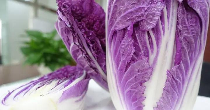 紫番茄、紫白菜、紫淮山……紫色果蔬走上餐桌,味道如何