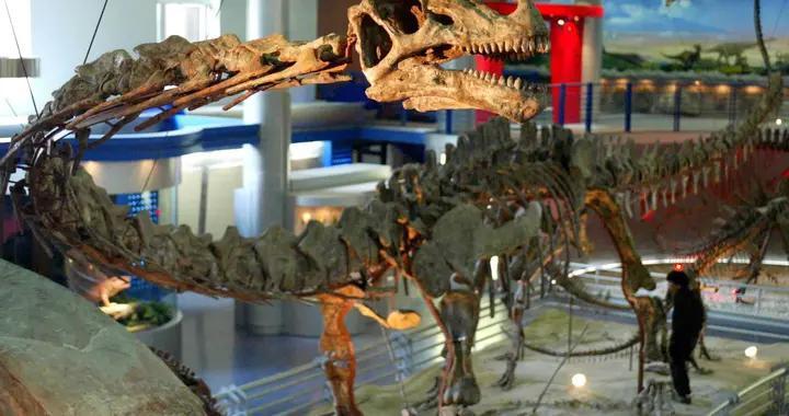"""北京自然博物馆增开""""恐龙公园"""""""