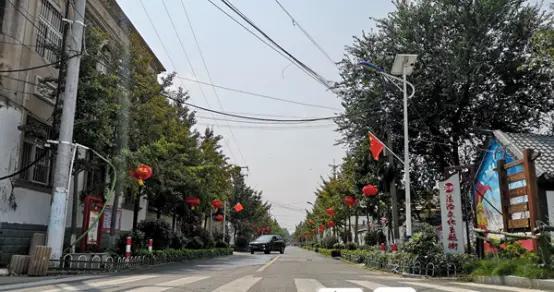 """栗园花海、农业公园、柳编体验基地……临沭美丽乡村""""蝶变""""记"""