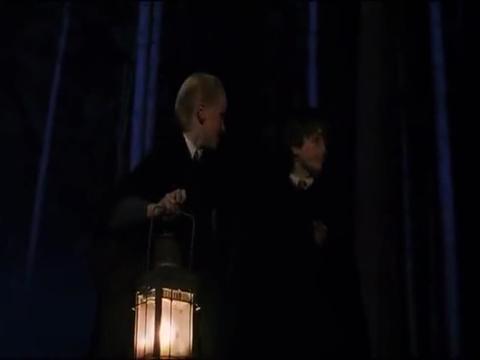 哈利波特:哈利在禁林遇到伏地魔人马救下哈利