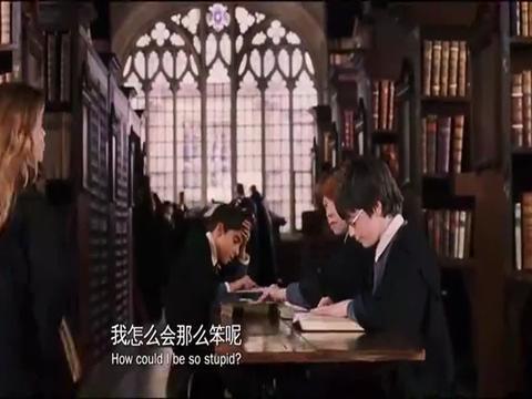 哈利·波特:魔法石的制作者勒梅,居然已经过了665个生日