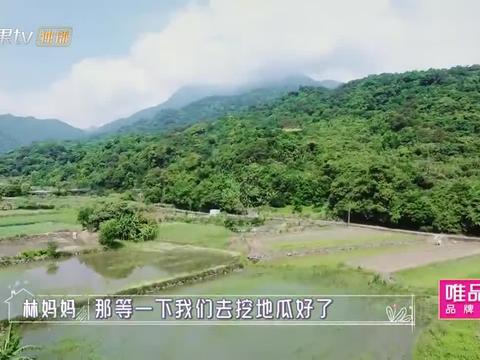 """陈若仪爸爸首次亮相,竟和林志颖妈妈""""挖地瓜"""",节目组差点笑喷"""