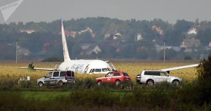 俄下诺夫哥罗德郊区小型飞机坠毁两人死亡