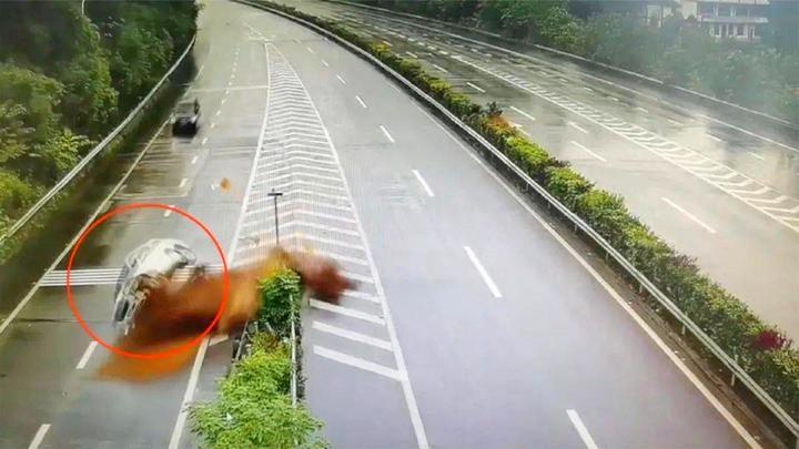危险!重庆一司机错过高速路口,强行变道引发事故