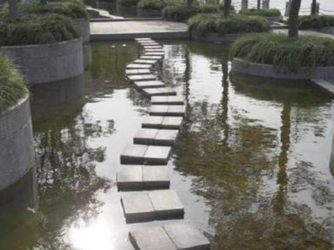 """上海一小众公园,是自然生态""""绿宝石"""",不输美国极限运动公园"""