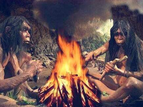 如今人类喜欢吃肉,但人类祖先最早是吃素的,它们被迫吃肉