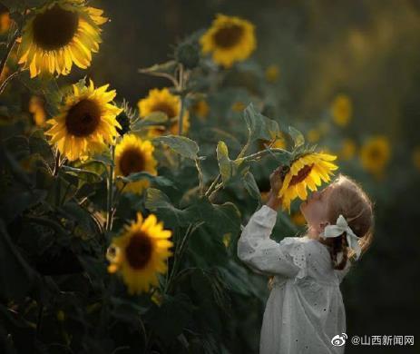所谓梦想,就是永不停息的疯狂。新的一天,加油,早安!