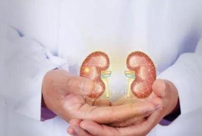真正能补肾的食物或许不是猪腰,但还是有很多人不清楚,来了解下