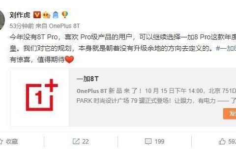 一加刘作虎:今年没有一加8T Pro!一加8Pro能顶一年